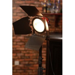800W Redhead Light Bulb